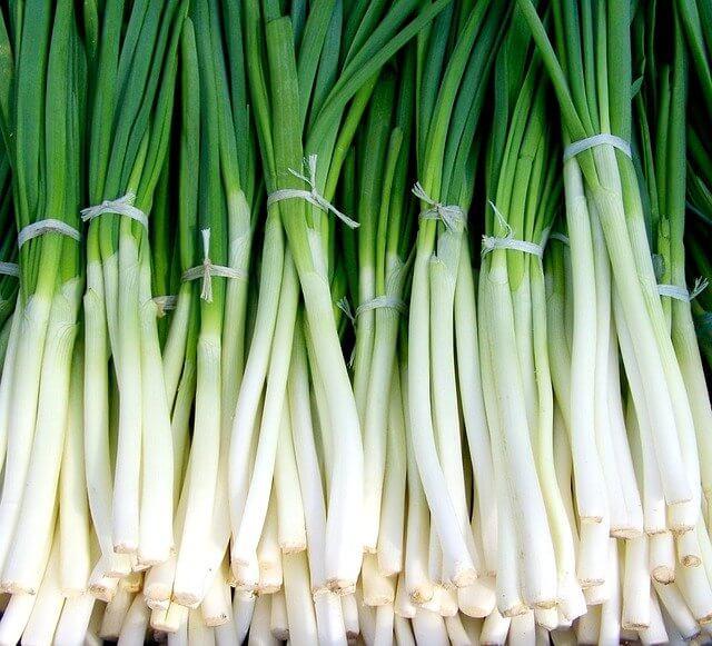 yeşil soğan kalori oranı - yeşil soğanın kalorisi