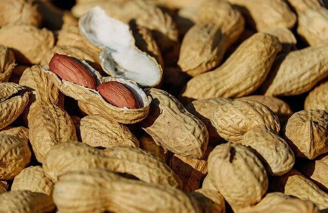 1 avuç fıstık kaç kalori? Fıstık besin değeri nedir ? Fıstık kilo aldırır mı? Yer fıstığı kalori oranı